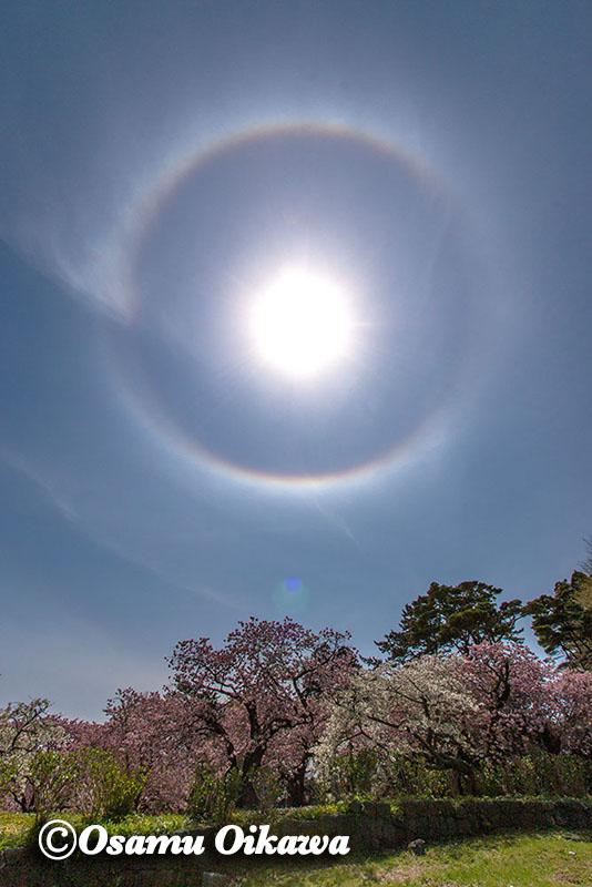 日暈(ひがさ)