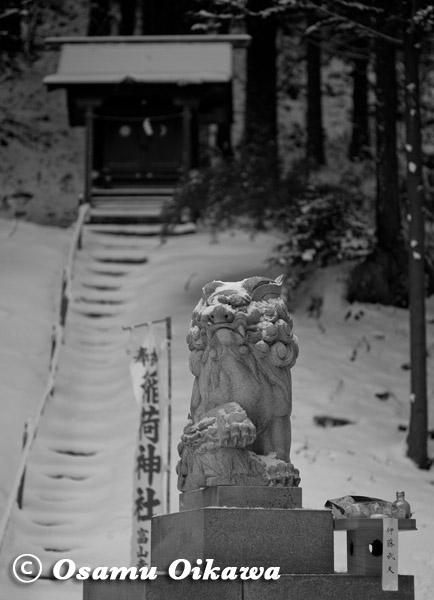 白符大神宮の狛犬