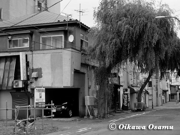 函館駅前・大門の柳小路