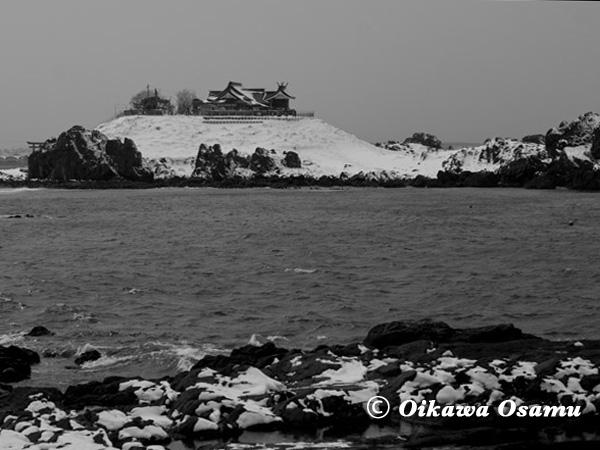 八戸市蕪島 2013