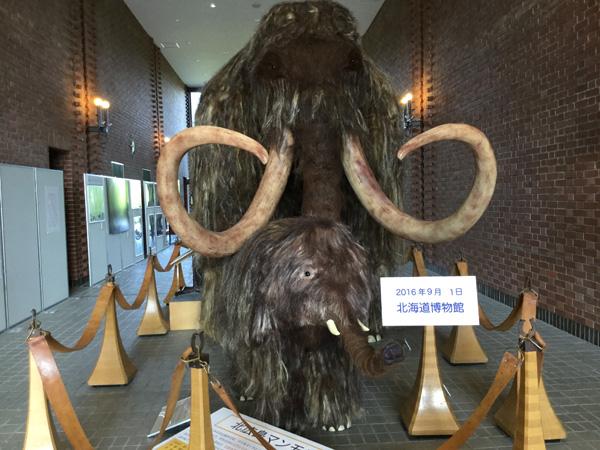 北海道博物館 2016 玄関にて マンモス